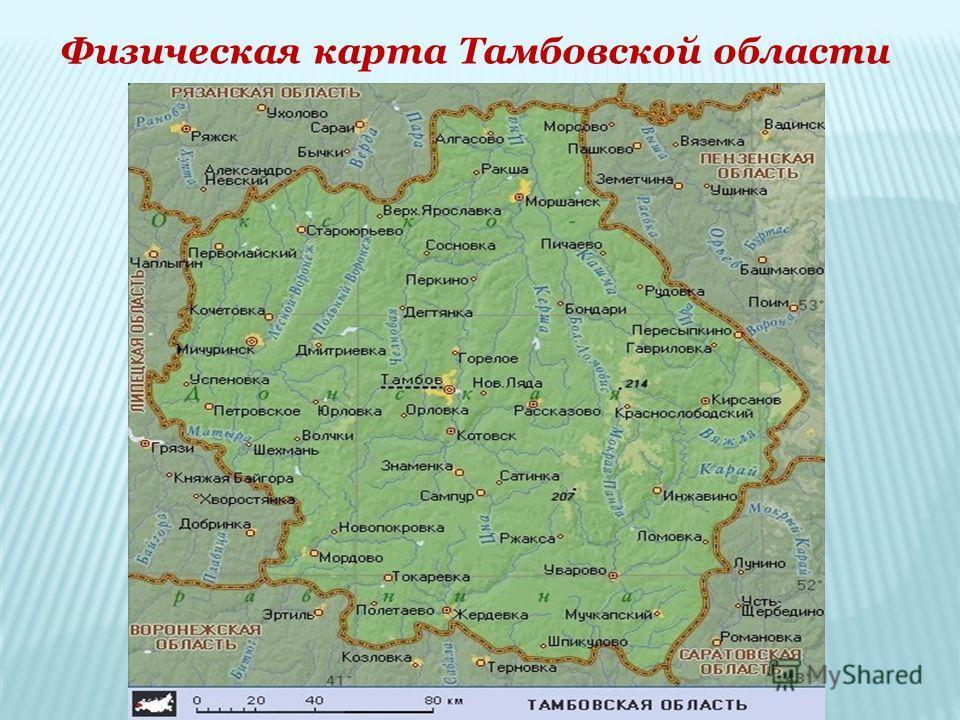 Сравним размеры территории области с другими территориями. 34, 4 тыс. кв. км. Тамбовская обл. Московская - 47 тыс.кв.км. Саратовская – 100,2 тыс.кв.км Тюменская – 1435,2 тыс.кв.км. Липецкая – 24,1 тыс.кв.км. Бельгия – 30,5 тыс.кв.км. Люксембург – 2,6