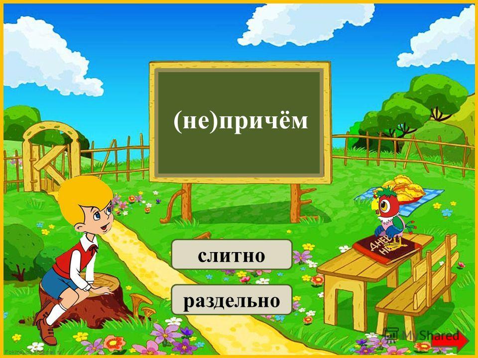 FokinaLida.75@mail.ru (не)включаю слитно раздельно