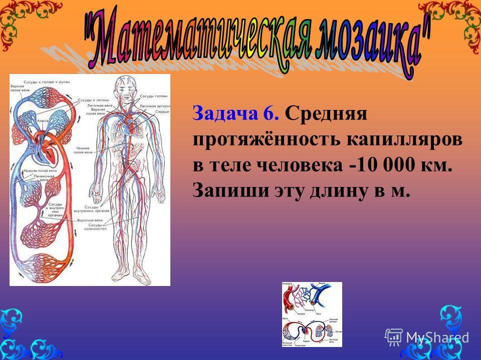 Задача 6. Средняя протяжённость капилляров в теле человека -10 000 км. Запиши эту длину в м.