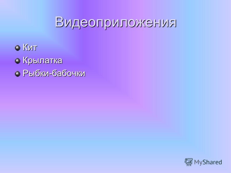 Видеоприложения Кит КрылаткаРыбки-бабочки