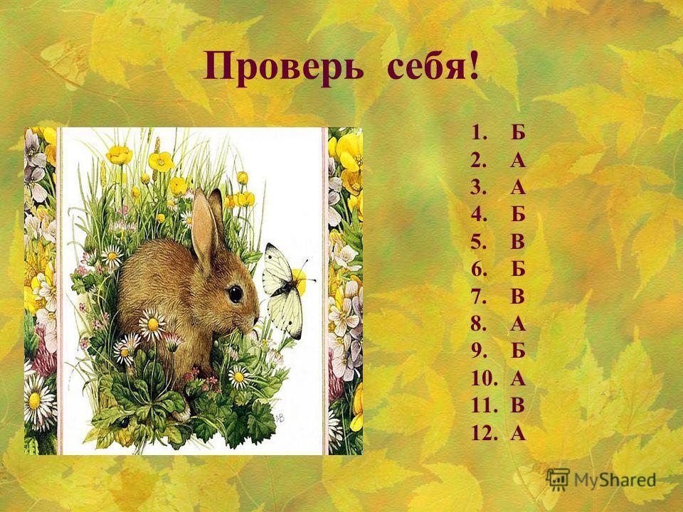 Проверь себя! 1. Б 2. А 3. А 4. Б 5. В 6. Б 7. В 8. А 9. Б 10. А 11. В 12.А