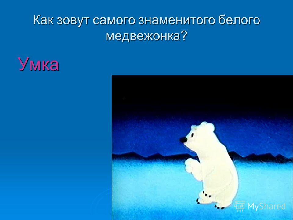 Как зовут самого знаменитого белого медвежонка? Умка