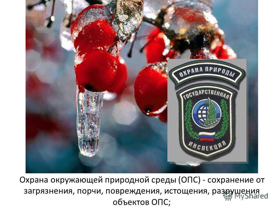 Охрана окружающей природной среды (ОПС) - сохранение от загрязнения, порчи, повреждения, истощения, разрушения объектов ОПС;