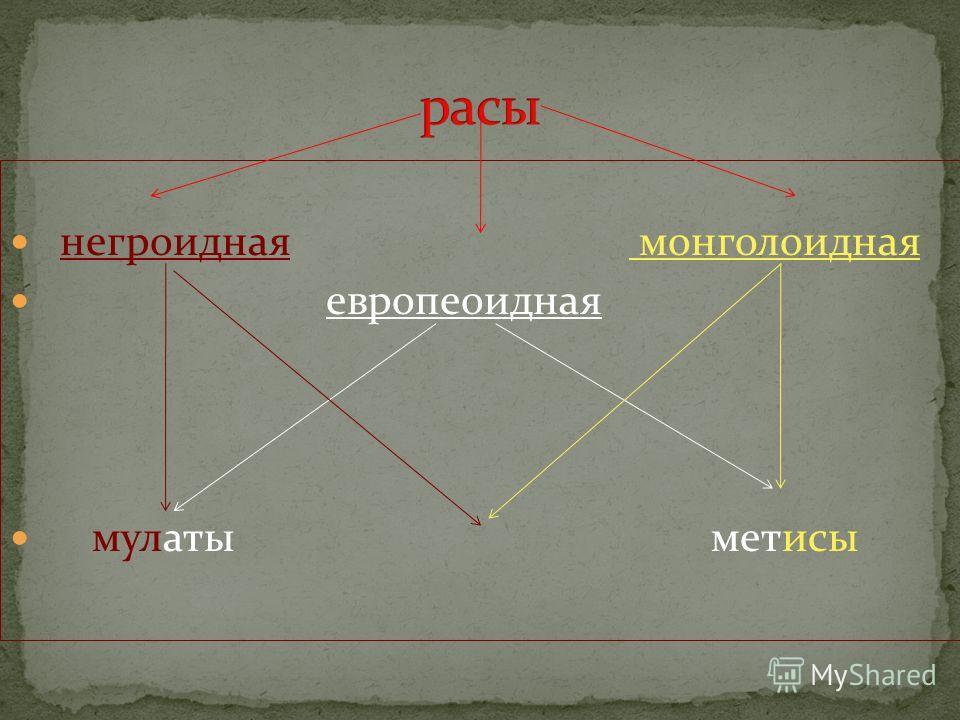 негроидная монголоидная европеоидная мулаты метисы