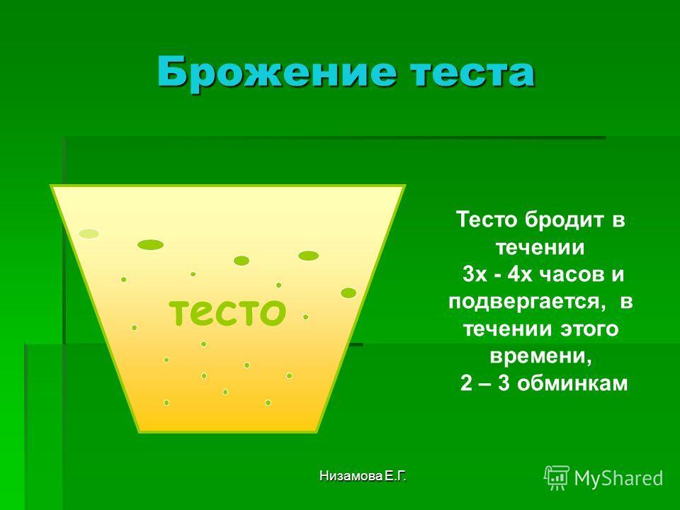 Низамова Е.Г. Брожение теста тесто Тесто бродит в течении 3 х - 4 х часов и подвергается, в течении этого времени, 2 – 3 обминкам