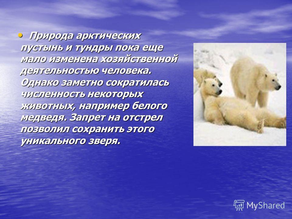 Природа арктических пустынь и тундры пока еще мало изменена хозяйственной деятельностью человека. Однако заметно сократилась численность некоторых животных, например белого медведя. Запрет на отстрел позволил сохранить этого уникального зверя. Природ