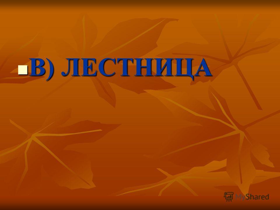 В) ЛЕСТНИЦА В) ЛЕСТНИЦА