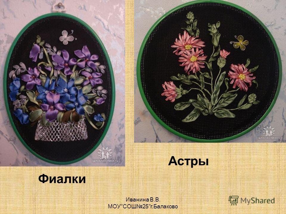 Фиалки Иванина В.В. МОУСОШ25г.Балаково Астры