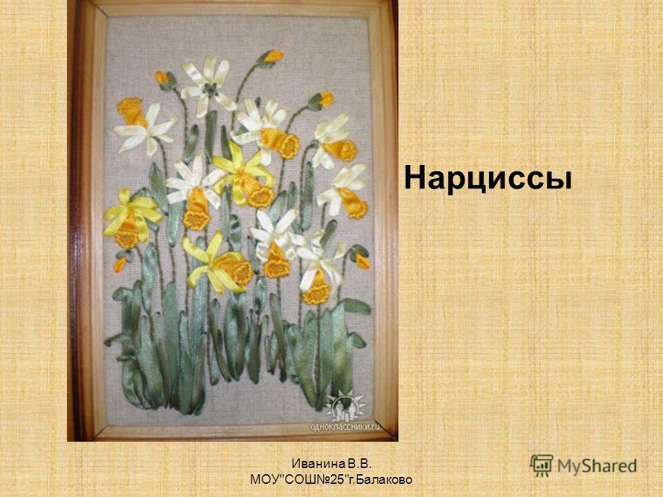 Иванина В.В. МОУСОШ25г.Балаково Нарциссы