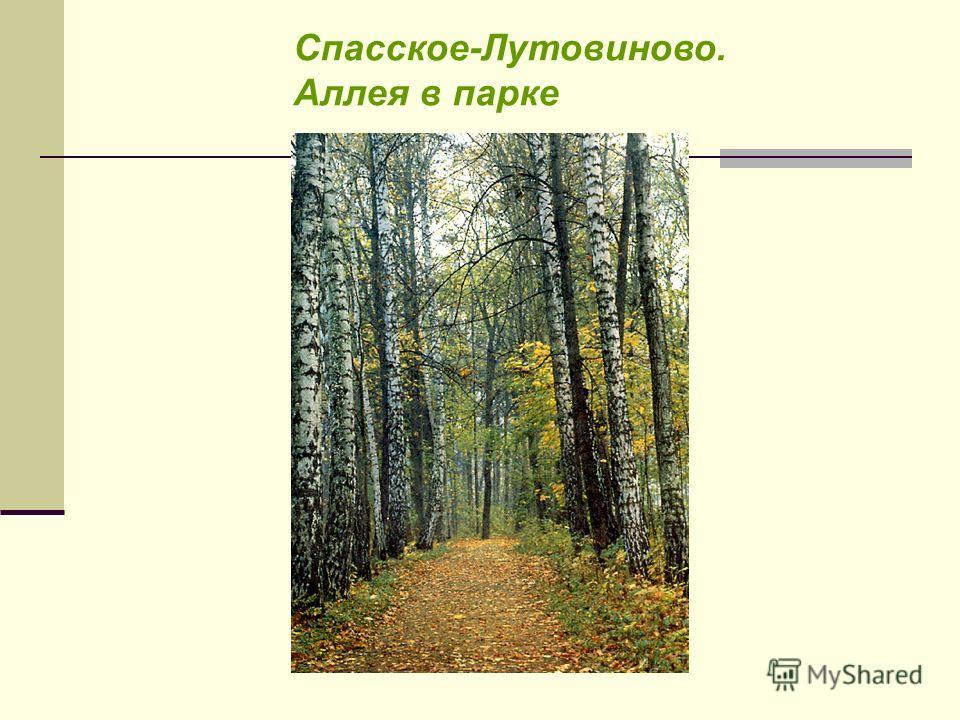 Спасское-Лутовиново. Аллея в парке