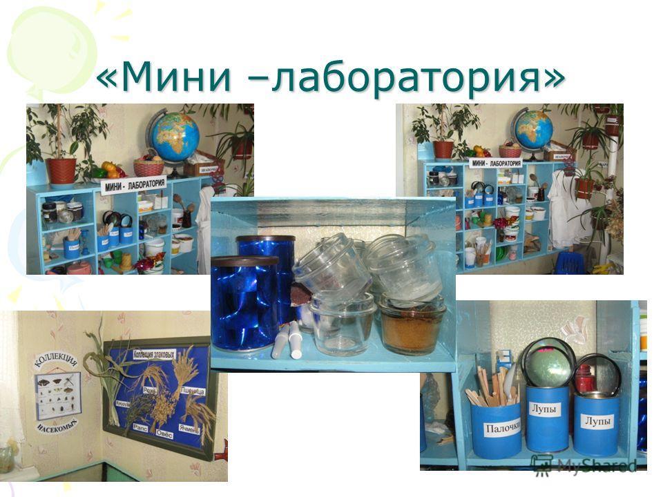 «Мини –лаборатория»