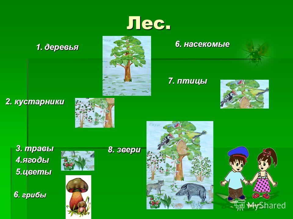 Лес. 1. деревья 1. деревья 2. кустарники 2. кустарники 3. травы 4. ягоды 5. цветы 5. цветы 6. грибы 6. насекомые 6. насекомые 8. звери 8. звери 7. птицы 7. птицы