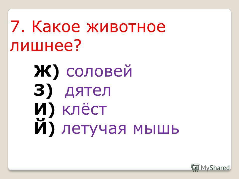 7. Какое животное лишнее? Ж) соловей З) дятел И) клёст Й) летучая мышь