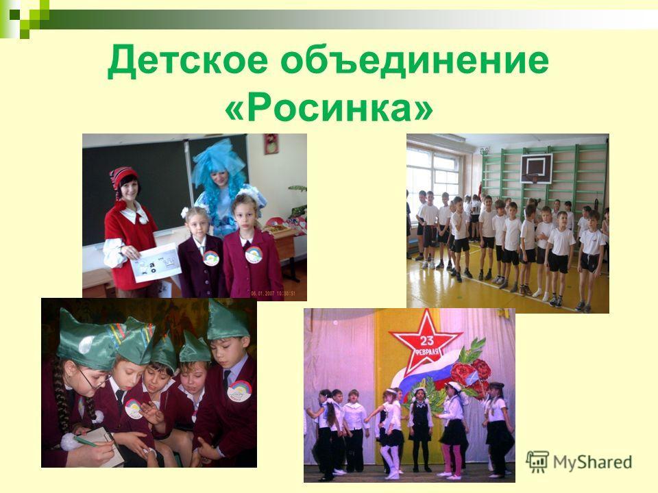 Детское объединение «Росинка»
