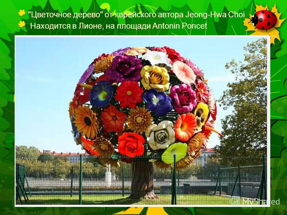 Далее Цветочное дерево от корейского автора Jeong-Hwa Choi Находится в Лионе, на площади Antonin Poncet