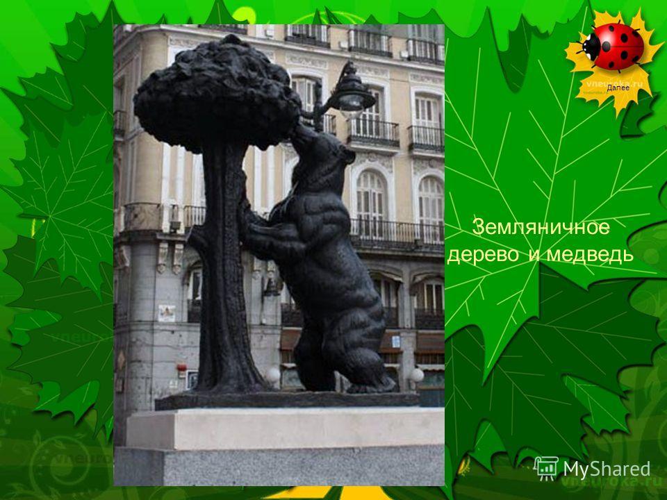 Далее Земляничное дерево и медведь