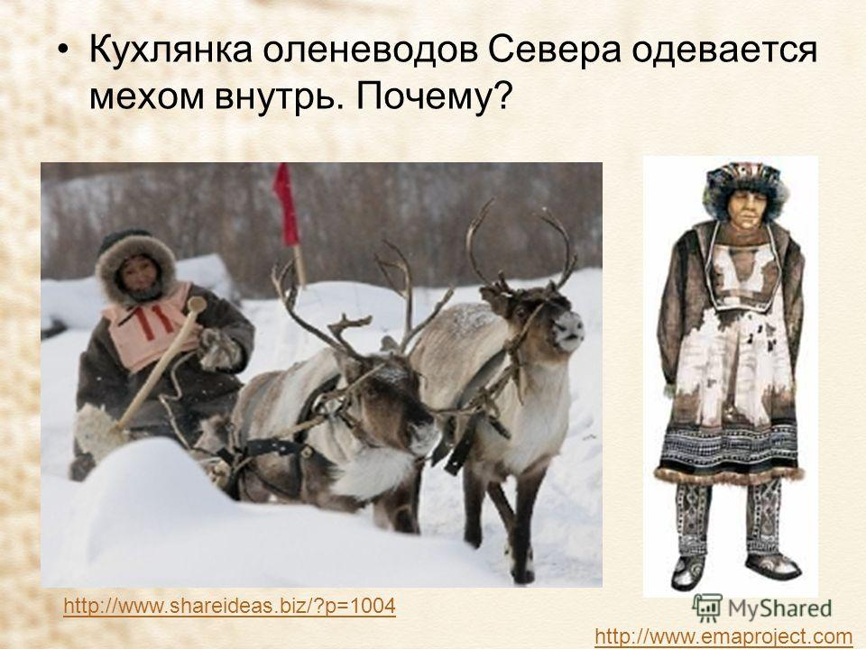 Кухлянка оленеводов Севера одевается мехом внутрь. Почему? http://www.emaproject.com http://www.shareideas.biz/?p=1004