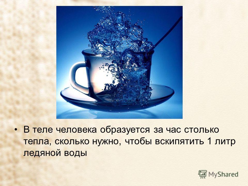 В теле человека образуется за час столько тепла, сколько нужно, чтобы вскипятить 1 литр ледяной воды
