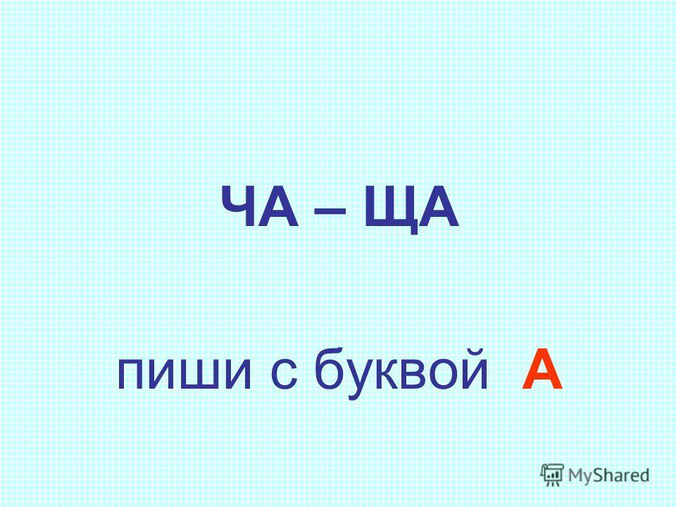 ЧА – ЩА пиши с буквой А