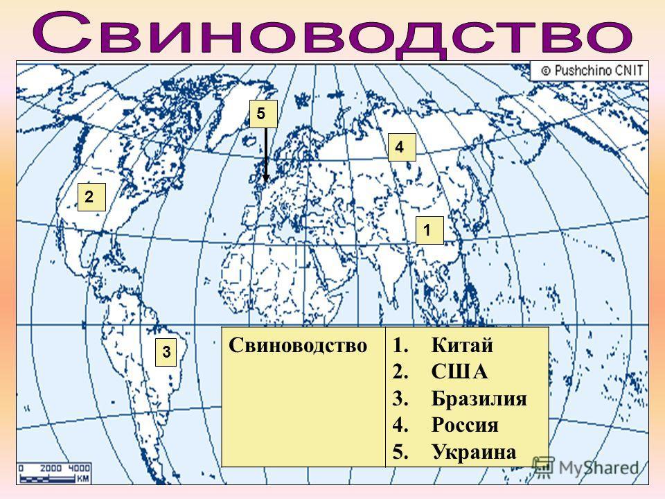 Свиноводство 1. Китай 2. США 3. Бразилия 4. Россия 5. Украина 1 2 3 4 5