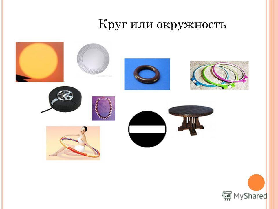 Круг или окружность