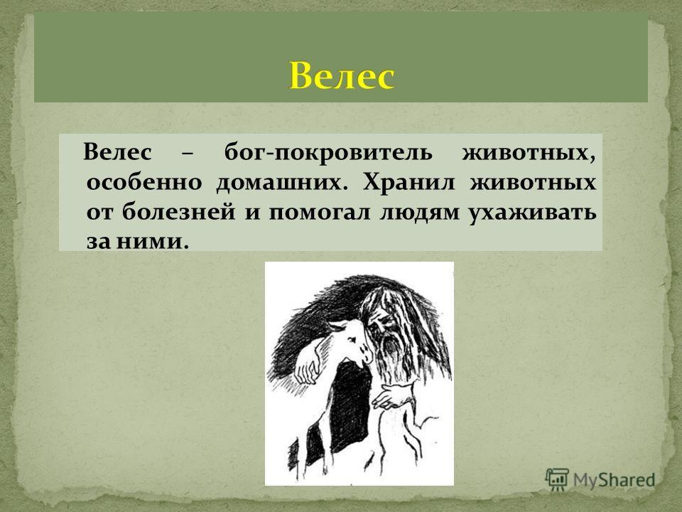 Велес – бог-покровитель животных, особенно домашних. Хранил животных от болезней и помогал людям ухаживать за ними.
