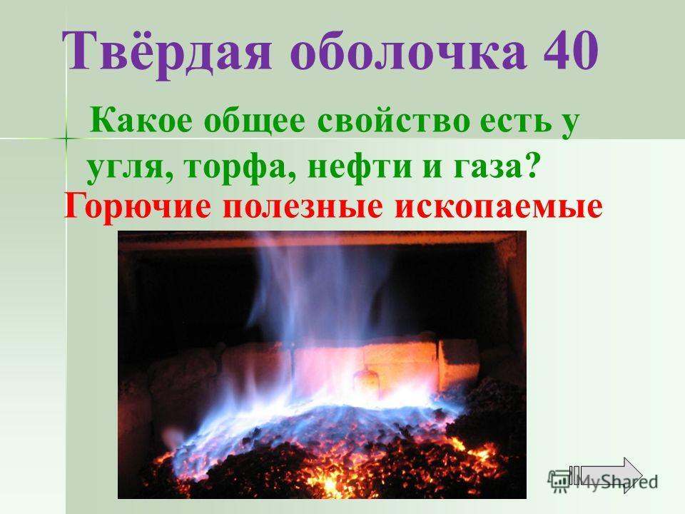 Твёрдая оболочка 40 Какое общее свойство есть у угля, торфа, нефти и газа? Горючие полезные ископаемые
