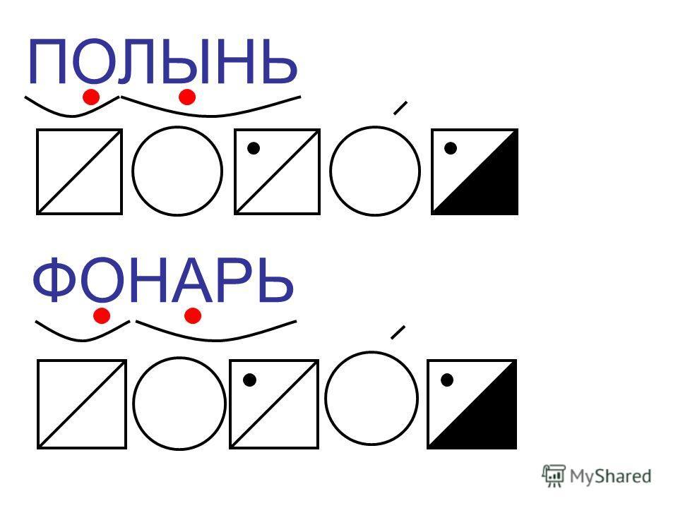 ПОЛЫНЬ ФОНАРЬ