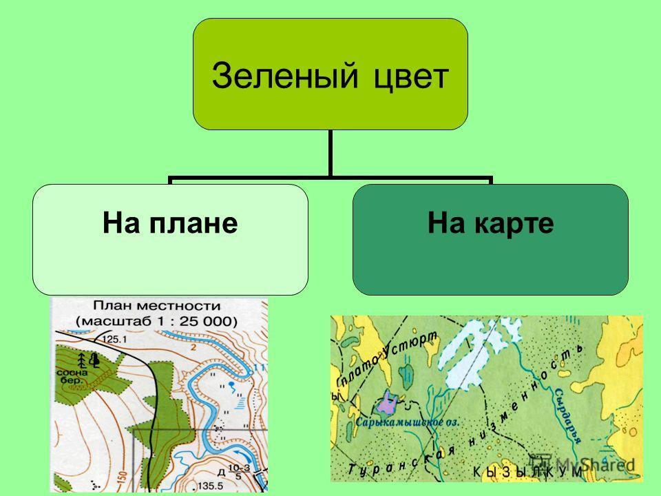 Зеленый цвет На плане лес На карте низины