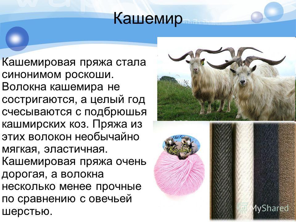 Кашемир Кашемировая пряжа стала синонимом роскоши. Волокна кашемира не состригаются, а целый год счесываются с подбрюшья кашмирских коз. Пряжа из этих волокон необычайно мягкая, эластичная. Кашемировая пряжа очень дорогая, а волокна несколько менее п
