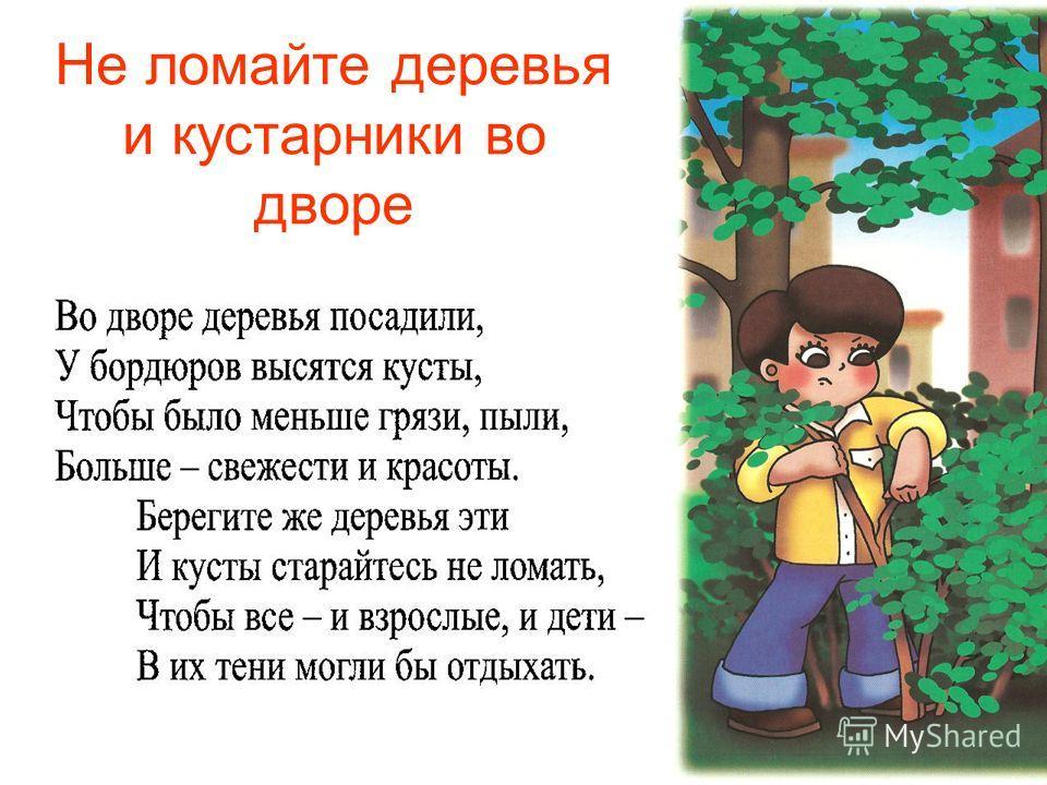 Не ломайте деревья и кустарники во дворе