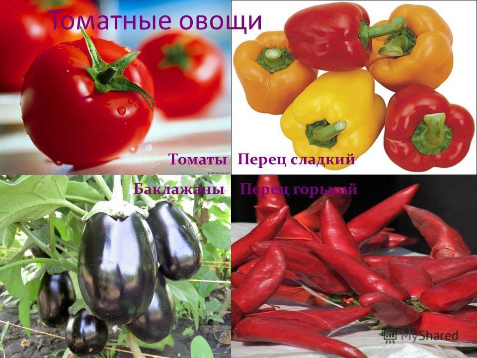 Томатные овощи томаты баклажаны перец