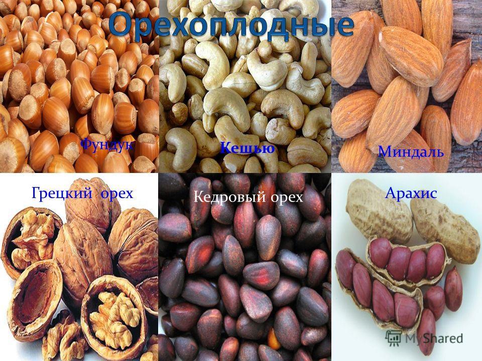 Грецкий орех Кедровый орех Кешью Фундук Миндаль Арахис