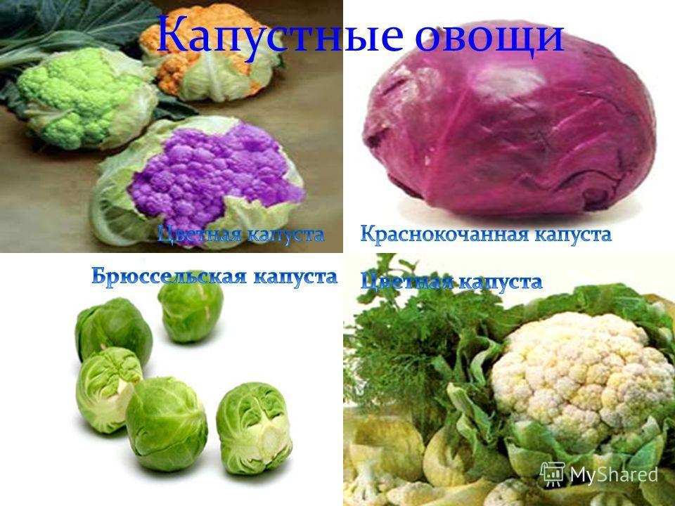 Капустные овощи