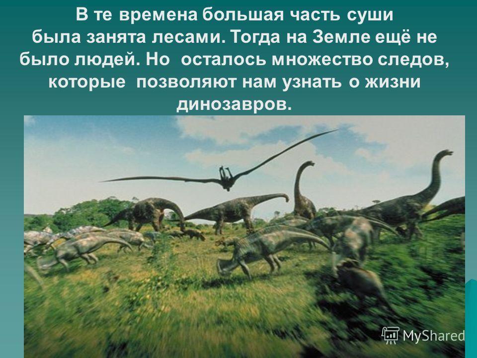 В те времена большая часть суши была занята лесами. Тогда на Земле ещё не было людей. Но осталось множество следов, которые позволяют нам узнать о жизни динозавров.