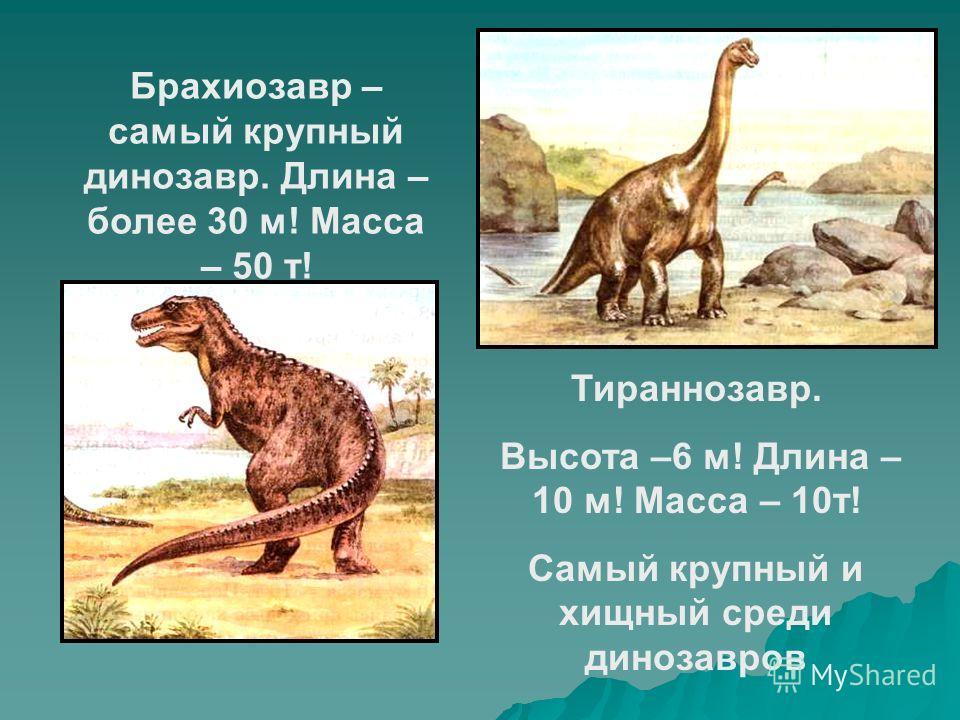 Брахиозавр – самый крупный динозавр. Длина – более 30 м! Масса – 50 т! Тираннозавр. Высота –6 м! Длина – 10 м! Масса – 10 т! Самый крупный и хищный среди динозавров