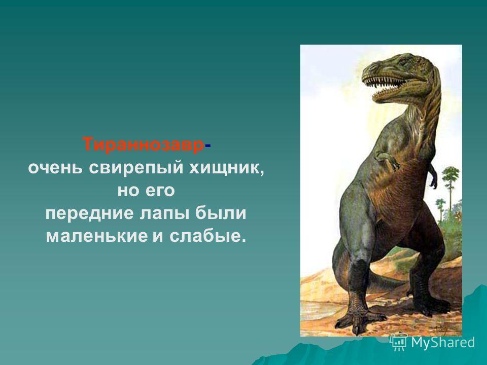 Тираннозавр- очень свирепый хищник, но его передние лапы были маленькие и слабые.