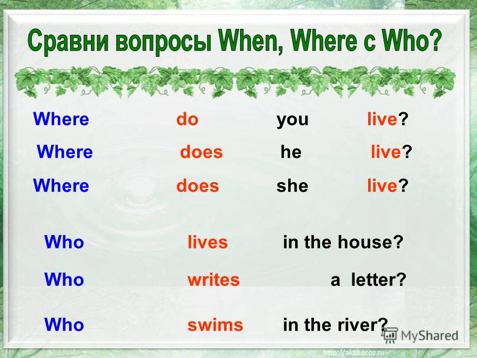 Where do you live? Where does helive? Where does she live? Wholivesin the house? Whowritesa letter? Whoswimsin the river?