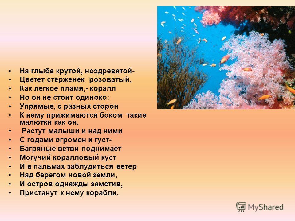 На глыбе крутой, ноздреватой- Цветет стерженек розоватый, Как легкое пламя,- коралл Но он не стоит одиноко: Упрямые, с разных сторон К нему прижимаются боком такие малютки как он. Растут малыши и над ними С годами огромен и густ- Багряные ветви подни