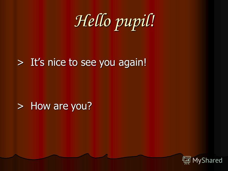 Hello pupil! > Its nice to see you again! > Its nice to see you again! > How are you? > How are you?