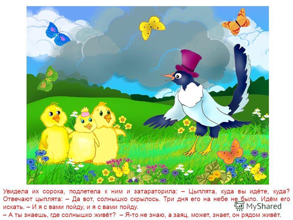 Однажды большая туча закрыла небо. Солнце три дня не показывалось. Заскучали цыплята без солнечного света и решили солнышко найти. Отправились цыплята в путь.