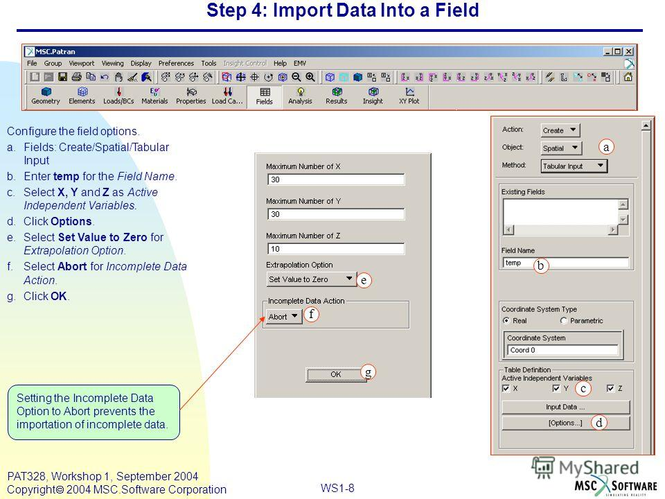 WS1-8 PAT328, Workshop 1, September 2004 Copyright 2004 MSC.Software Corporation Step 4: Import Data Into a Field Configure the field options. a.Fields: Create/Spatial/Tabular Input b.Enter temp for the Field Name. c.Select X, Y and Z as Active Indep