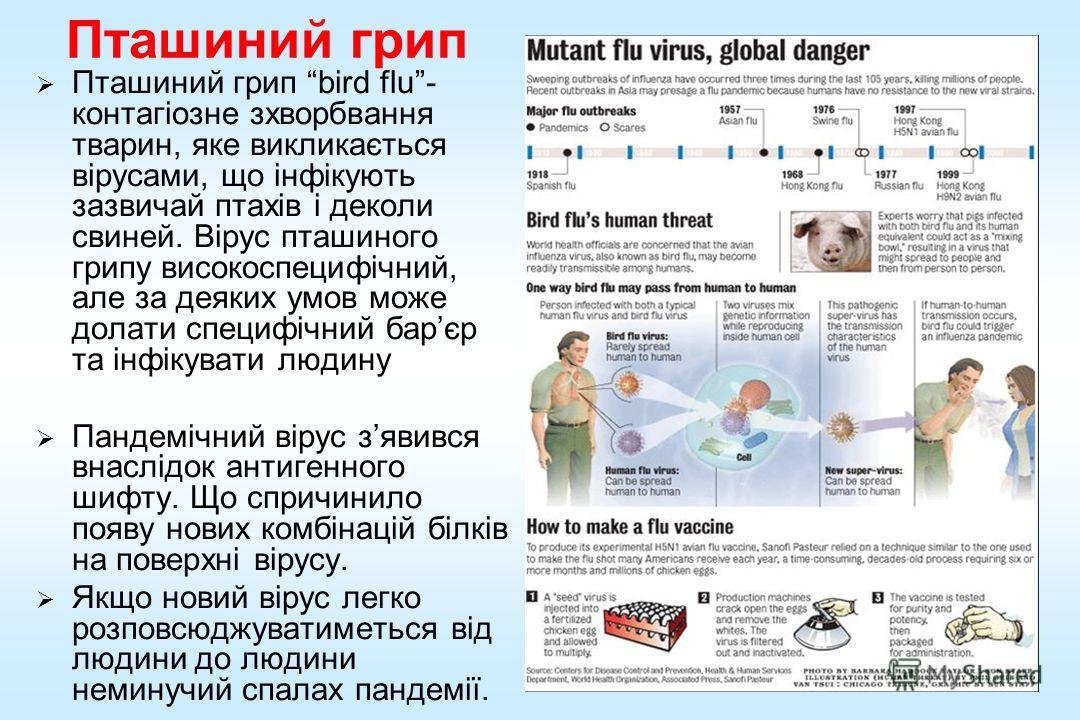Пташиний гриппппппппппп Пташиний гриппппппппппп bird flu- контагіозне зхворбвання тварин, яке викликається вірусами, що інфікують зазвичай птахів і деколи свиней. Вірус пташиного гриппппппппппппу високоспецифічний, але за деяких умов може долати спец