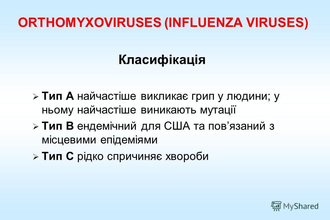 ORTHOMYXOVIRUSES (INFLUENZA VIRUSES) Класифікація Тип A найчастіше викликає гриппппппппппп у людини; у ньому найчастіше виникають мутації Тип B ендемічний для США та повязаний з місцевими епідеміями Тип C рідко спричиняє хвороби