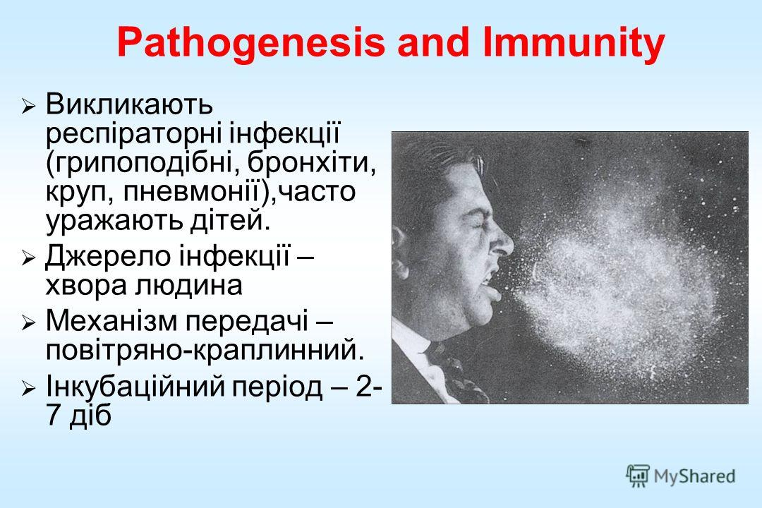 Pathogenesis and Immunity Викликають респіраторні інфекції (грипппппппппппоподібні, бронхіти, круп, пневмонії),часто уражають дітей. Джерело інфекції – хвора людина Механізм передачі – повітряно-краплинний. Інкубаційний період – 2- 7 діб