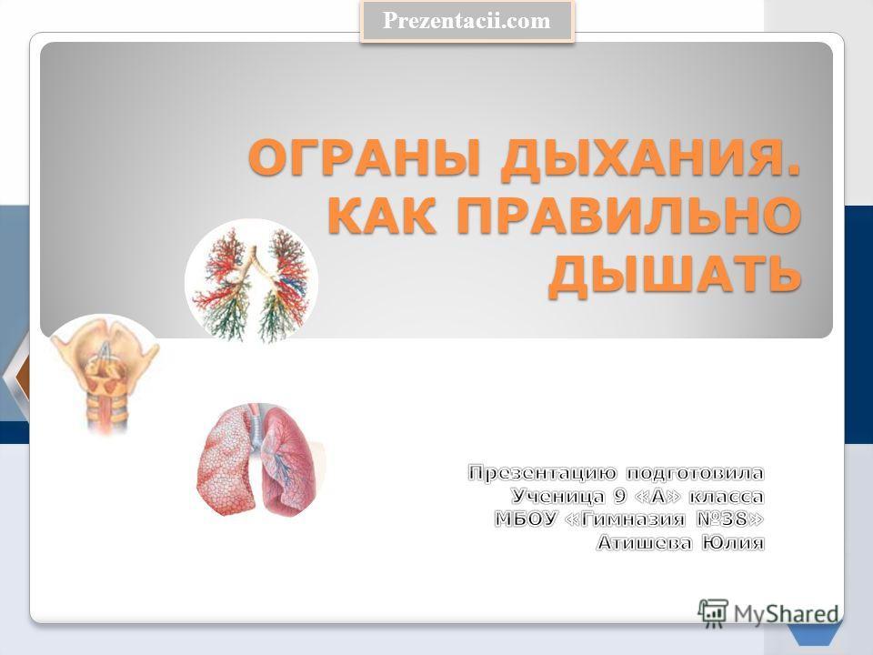 Prezentacii.com ОГРАНЫ ДЫХАНИЯ. КАК ПРАВИЛЬНО ДЫШАТЬ