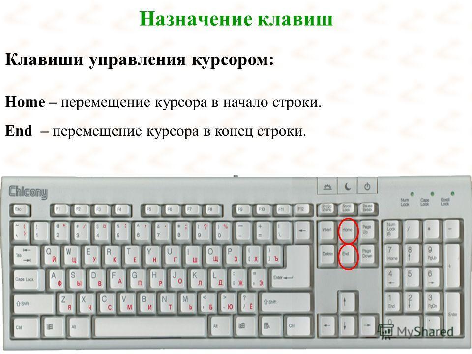 Назначение клавиш Клавиши управления курсором: Home – перемещение курсора в начало строки. End – перемещение курсора в конец строки.