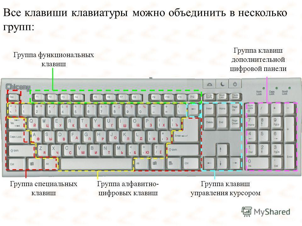 Все клавиши клавиатуры можно объединить в несколько групп: Группа функциональных клавиш Группа клавиш дополнительной цифровой панели Группа алфавитно- цифровых клавиш Группа клавиш управления курсором Группа специальных клавиш