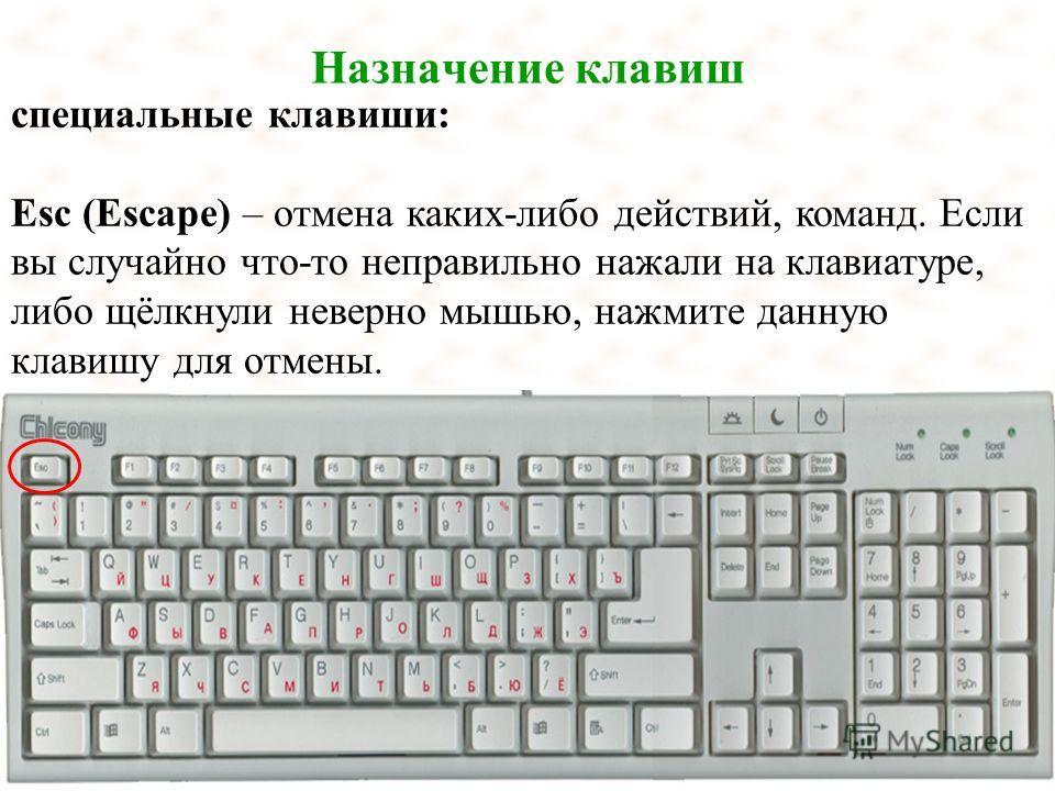 Назначение клавиш специальные клавиши: Esc (Escape) – отмена каких-либо действий, команд. Если вы случайно что-то неправильно нажали на клавиатуре, либо щёлкнули неверно мышью, нажмите данную клавишу для отмены.