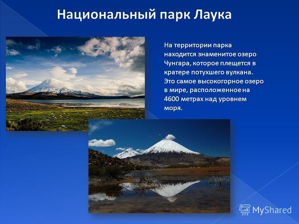 На территории парка находится знаменитое озеро Чунгара, которое плещется в кратере потухшего вулкана. Это самое высокогорное озеро в мире, расположенное на 4600 метрах над уровнем моря.